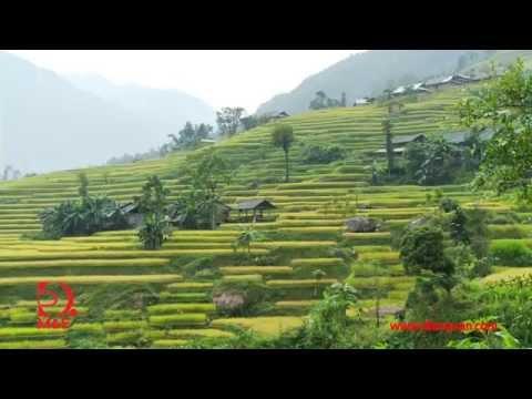 [Tập 1 - Khám phá Việt Nam cùng Robert Danhi] Hà Giang - Cao nguyên đá nở hoa (HD)