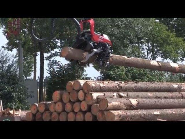 Holz bewegt unser Klima