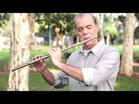 O Flautista de Tema de Helena