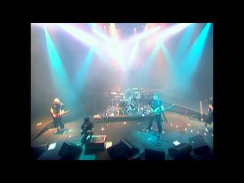 AMATORY - P.S (Live Evil)