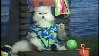"""Mr. Tinkles Funny Interview For """"Cats & Dogs: The Revenge"""