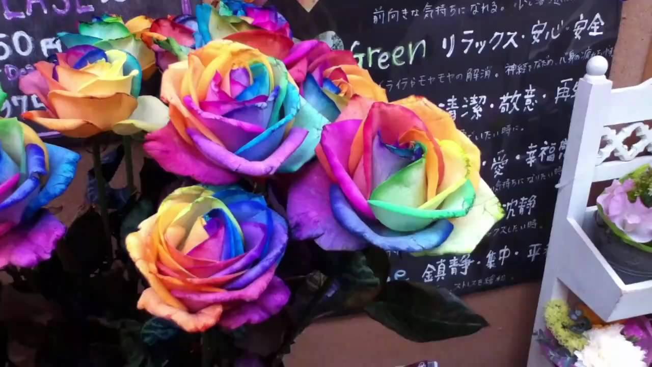 Rainbow Roses in Shinjuku Tokyo Japan - YouTube