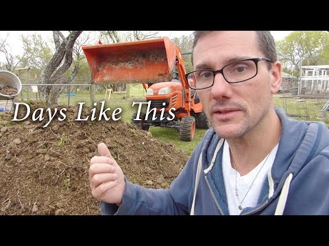 aww compost! The horse ate my tree again!