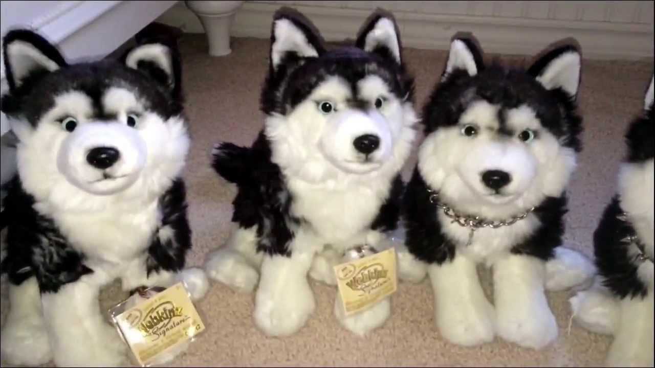 2 Webkinz Signature Huskies Unboxing! - YouTube