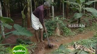 The Efforts Being Taken By Krishi Bhavan Elavally For