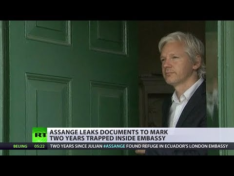 'We hope Assange will go free in the next few days' - WikiLeaks spokesperson