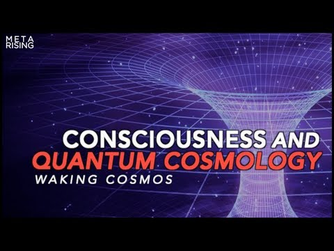 Waking Cosmos | Documentary | The Self-Excited Circuit [Episode one]