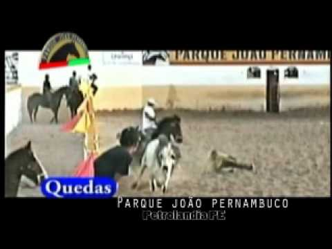 Video quedas de vaquejada.wmv
