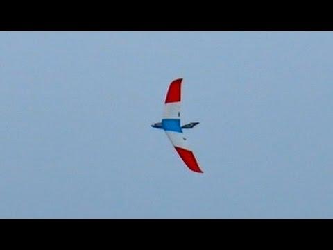 Nurflügler Zephyr und Hai 1 evo Front angetrieben Demo Flight Faszination Modellbau 2014 *50fpsHD*