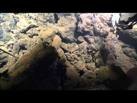 Virtual Vents - ROPOS Dive R1919 -Science Sampling