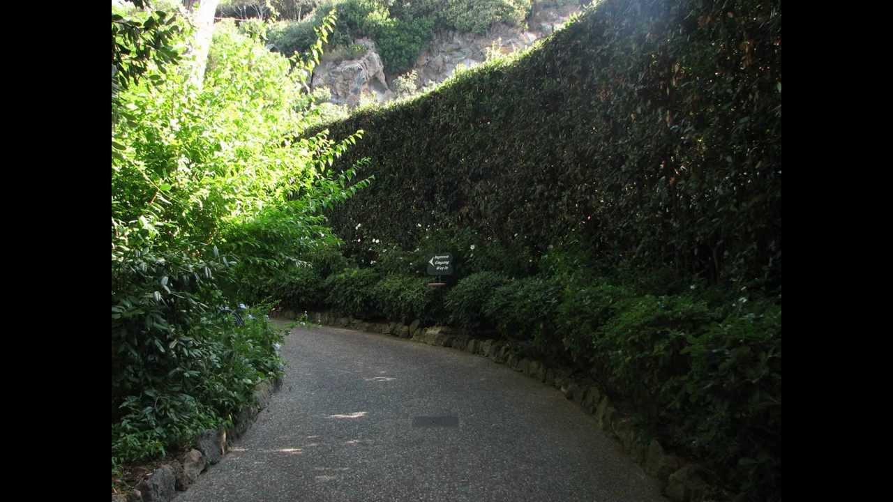Giardini la mortella forio d 39 ischia la mia visita nel mese di agosto 2012 youtube - Giardino la mortella ...