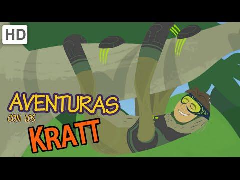 Aventuras con los Kratt (HD Español) - Estofado De Selva