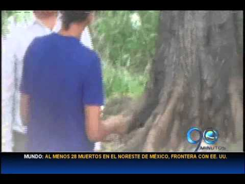 Abril 10 de 2014. Policía captura expendedores de alucinógenos en el parque de La Floresta