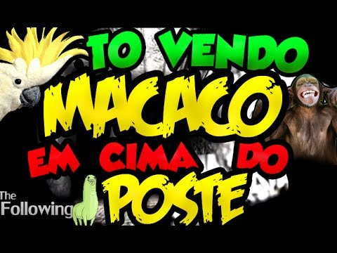 To vendo MACACO em cima do POSTE! - The Following