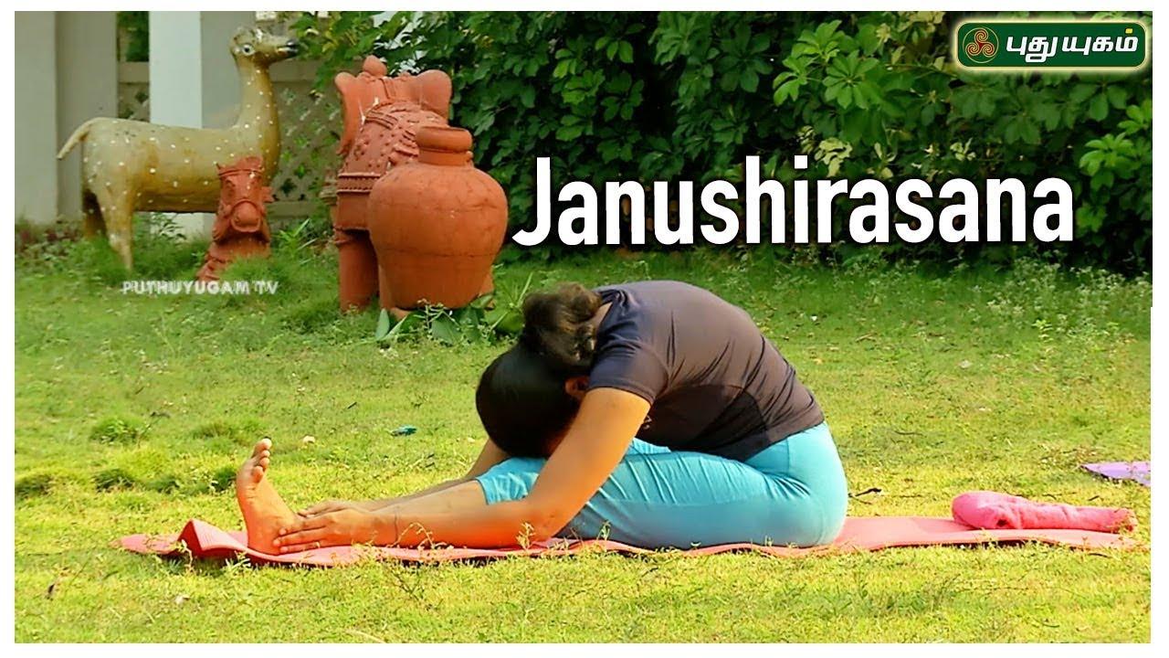 Janushirasana (Head to Knee Pose) | ஜானு சிரசாசனம் | Stretching Pose | Yoga