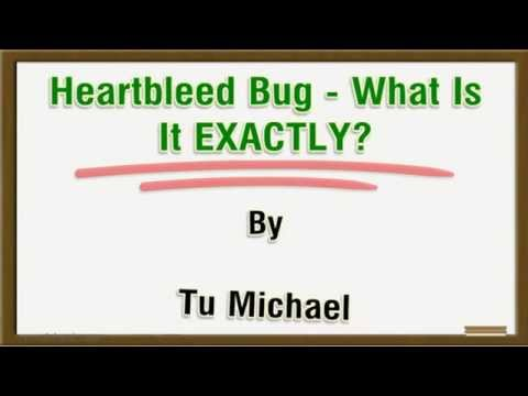 Heartbleed Bug -  What Is It EXACTLY?