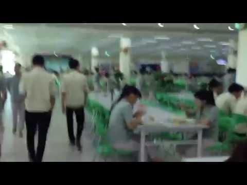 Cong ty dien tu Samsung Vietnam (Bac Ninh) - Nha an