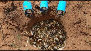 Clever Boys Catch A Lot Of Crab By Using Water Pipe Deep Hole Crab Trap