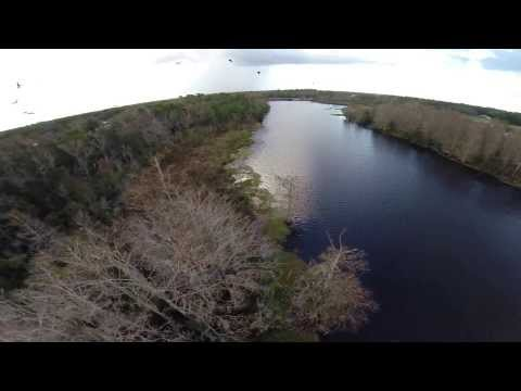 Predator or Prey?  Flying with Vultures!  The Real Birds Eye View!  GoPro Drone www.HobbyFlip.com