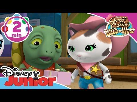 Sheriff Callie | A Dangerous Journey | Disney Junior UK