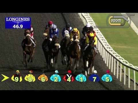 Vidéo de la course PMU THE DUBAI CREEK MILE