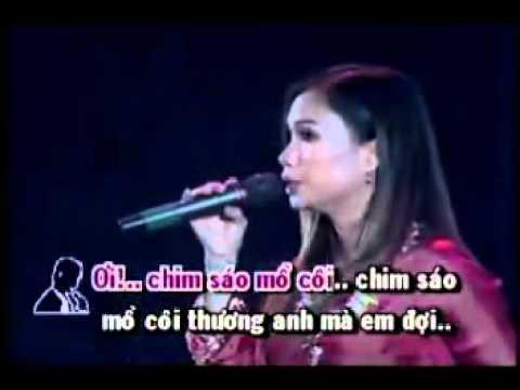 Dan Truong_Cam Ly - Chim Trang Mo Coi [ VietLion.Com ]  .mp4