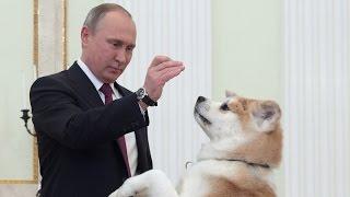 بالفيديو   بوتين يخلق الحدث بفيديو مع كلبه  
