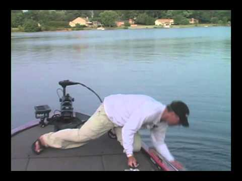 Nc fish fights back lake norman lake wylie bass for Lake norman bass fishing