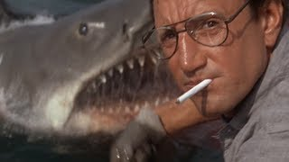 Jaws was so Gay
