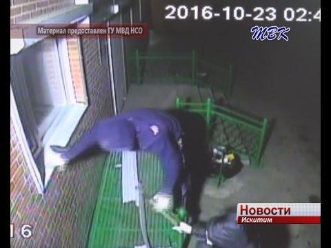 16 краж сделала банда магазинных налетчиков изИскитима