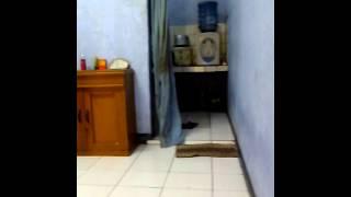 ngentot dikos sambil nonton bokep view on youtube.com tube online.