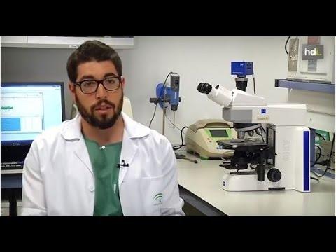HDL Miguel González-Andrades, abriendo camino para curar la ceguera con córneas artificiales