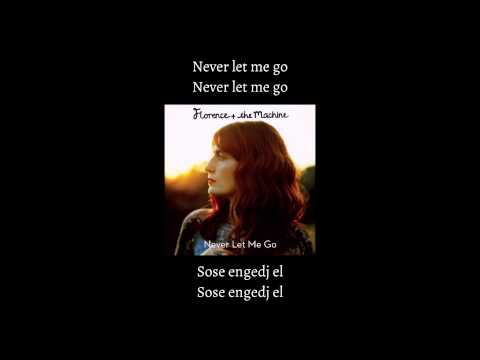 Florence + the Machine - Never Let Me Go (Hungarian/Magyarul)