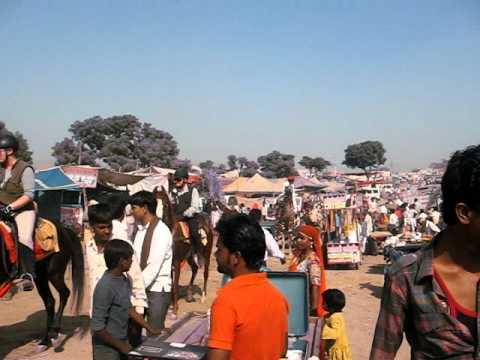 Tour Packages Rajasthan Tour Packages, Rajasthan Trip Packages, Rajasthan Tourism