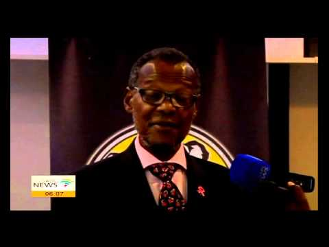 Buthelezi appealed to voters in CT to vote IFP