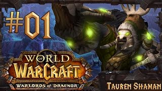 World Of Warcraft: Warlords Of Draenor Lvl 90-100 Gameplay