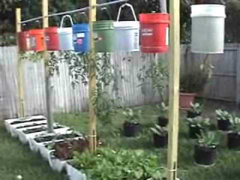 Upside down hanging vegetable garden containers plastic drums bags and toilets youtube - Upside down gardening ...