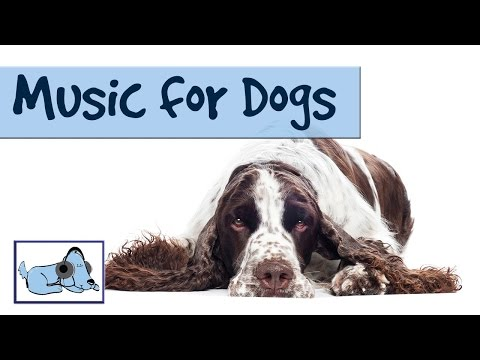 Relaxing Music For Dogs 1 Hour - OVER 1 HOUR OF RELAXING ... Relaxing Dog Music 6 Hour
