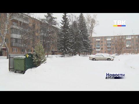 Праздники подошли к концу, и жители Бердска начали выбрасывать новогодние ёлки