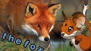 Transformice The Fox