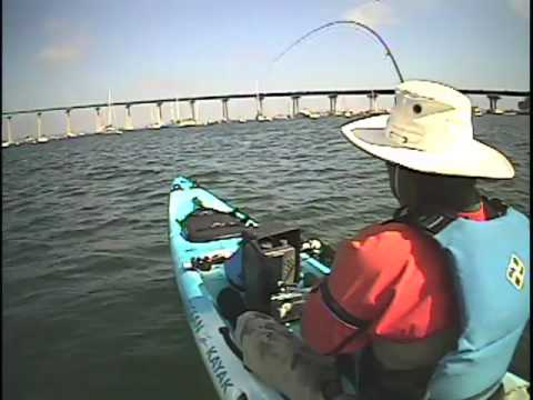 San diego bay kayak fly fishing by johnnyceviche youtube for Fly fishing san diego