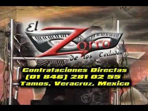 El Zorro de los teclados en vivo parte 1