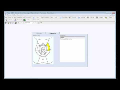 5.7 Vulvoscopia per i software ProLes e ProGin (v.2.0.0.) BoxLine