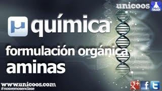 Química orgánica 1º Bachillerato. Aminas