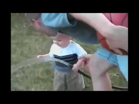 Видео самые смешные видео