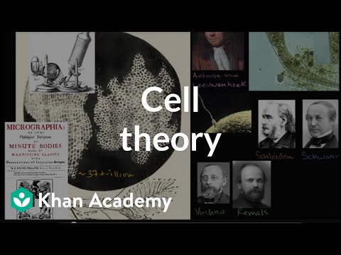 Cell theory | Structure of a cell | Biology | Khan Academy