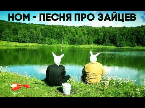 НОМ Песня про зайцев