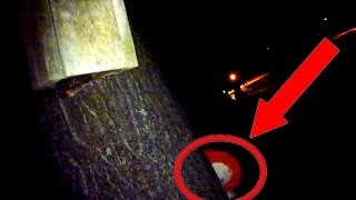 Haunted Annabelle Doll Caught On Tape!