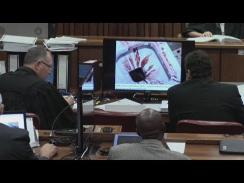 Drenched in blood: court shown photos of Oscar Pistorius