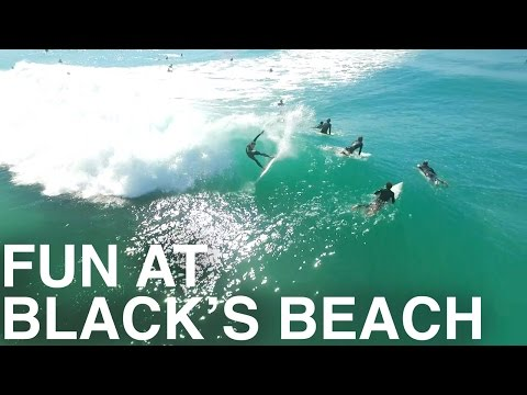 Fun in the Sun at Black's Beach [DRONE FOOTAGE]